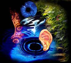 Aletheia: Sensación y percepción