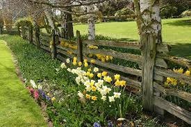 40 Beautiful Garden Fence Ideas Rustic Fence Rustic Garden Fence Rustic Garden Lighting