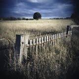 gate fence farm stock photos
