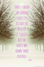 amazing quote for winter solstice