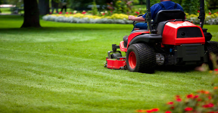 """Image result for Professional Lawn Care Services"""""""