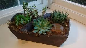succulent garden by newport florist and