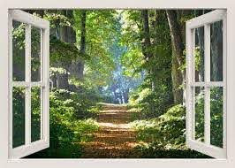 Forest Wall Decal Walkway Forest 3d Window Wall Decal Forest Etsy