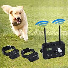 Best Wireless Invisible Dog Fence