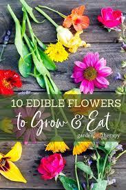 edible flowers to grow in your garden