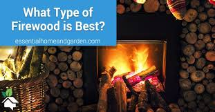 types of firewood a simple guide to