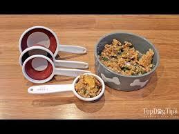 homemade dog food to feed my dog