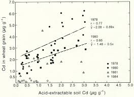 Residual cadmium in a soil profile and accumulation in wheat grain