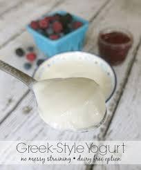 dairy non dairy greek style yogurt