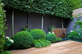 How To Hide An Ugly Garden Fence Houzz Au