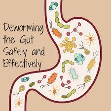 deworming the gut safely and