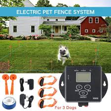 In Ground Dog Fence 3 Dogs In 2020 Dog Training Collar Dog Fence Dogs