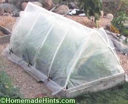 greenhouse with pvc frame