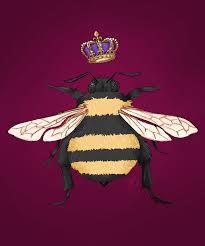 queen bee wallpapers top free queen