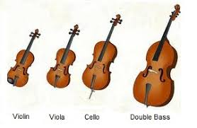 Which stringed instrument to learn? | Normans Music Blog