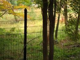 Deer Fence Deer Gates Long Island New York