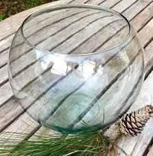 bowl fishbowl goldfish betta fish