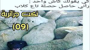 صور مضحكة جزائرية احلى الضحك والنكت من شعب الجزائر هل تعلم