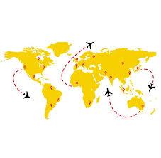 The Decal Guru World Travel Flight Map Wall Decal Reviews Wayfair