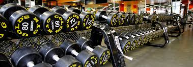 gold s gym franchise information 2020