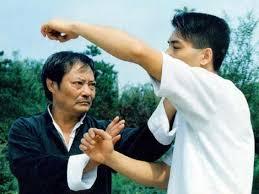 Formy Ving Tsun Kung Fu