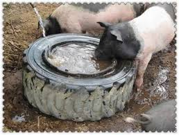 diy pig watering bowl
