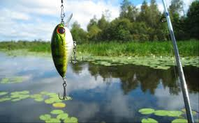 fishing bait wallpaper background 60364