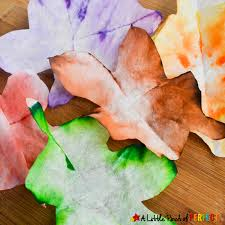 autumn leaves steam absorption art and