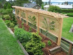 Grape Vine Arbor This Would Be Neat As A Behind A Bench Fence Combo Too For Shade And Priv Garden Trellis Designs Backyard Landscaping Garden Privacy Screen