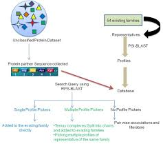 Re-visiting protein-centric two-tier classification of existing DNA-protein  complexes | BMC Bioinformatics | Full Text