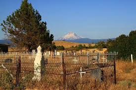 Cemetery Haunted Halloween Scary Horror Dark Evil Graveyard Grave Landscape Creepy Pikist