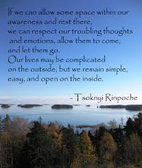 quotes for your meditation natural meditation