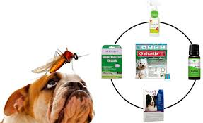 mosquito repellents for dogs top 5