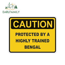 Earlfamily 13cm X 10cm Caution Protected By Bengal Warning Car Sticker Cat Pet Decal Vinyl Car Styling Body Decals Accessories Car Stickers Aliexpress
