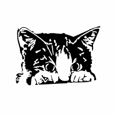 Yjzt 16x11 2cm Cute Kitten Car Sticker Vinyl Art Cat Lover Crazy Lady Funny Pet Decal Black Silver C24 1714 Car Stickers Aliexpress