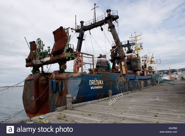 """Image result for fishing new zealand russian"""""""