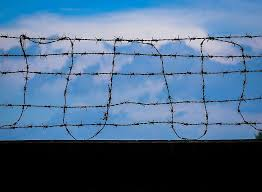 Fence Day Sky No People Fences Black Wall Clear Sky Security Wire Sharp Protection Pikist