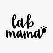 Lab Mom Stickers Redbubble