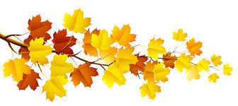Branch with Autumn Leaves PNG Clipart | Fall clip art, Leaf clipart, Autumn painting