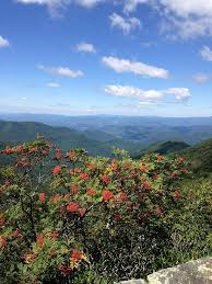 hikes close to downtown asheville