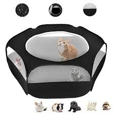 Best Small Animal Playpens Buying Guide Gistgear