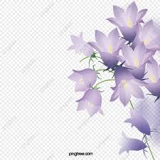 زهور البنفسج الأرجواني الزهور نبات Png وملف Psd للتحميل مجانا