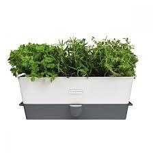 self watering triple potted fresh herb