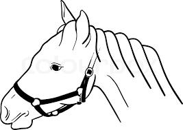 Mewarna11 Paardenhoofd Met Halster Kleurplaat