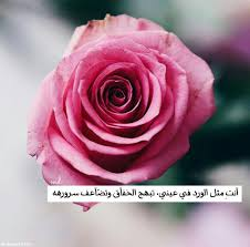 زهور جميلة مع عبارات