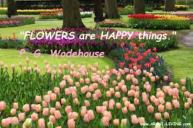 the joyful colors of spring inspirational quotes and lovely