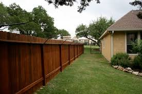I Ve Heard About Doing This Kind Of Fencing From What I Ve Heard Your Cat Cant Climb It So If You Ring It Around Cat Fence Outdoor Cat Enclosure Outdoor Cats
