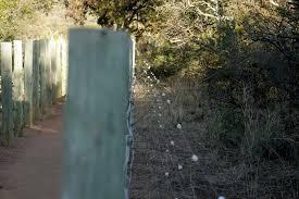 pilanesberg electric fencing 001 jpg