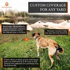 Pet Control Hq Wireless Electric Dog Fence Remote Dog Training System Waterproof Rechargeable Shock Collar Customizable Above Or Below Ground Hidden Safe Fence Containment Covers Up To 10 Acres 1
