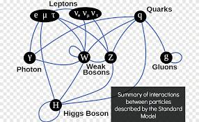 Física de partículas el modelo estándar de partículas de dios higgs boson,  ciencia, ángulo, texto png | PNGEgg